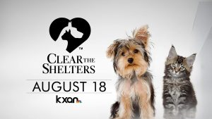 Clear The Shelters @ Austin Animal Center | Austin | Texas | United States