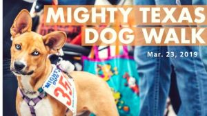 Mighty Texas Dog Walk @ Austin American-Statesman | Austin | Texas | United States