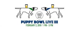 Puppy Bowl III: Benefiting Austin Pets Alive! @ Yard Bar | Austin | Texas | United States