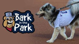 Bark in the Park @ Round Rock Express | Round Rock | Texas | United States